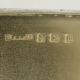 Stamp Box Sterling Silver c1911 S Blanckensee & Sons Birmingham